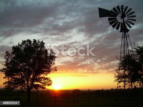 Shiner, Texas ranch at sunset with windmill and a Live Oak tree.