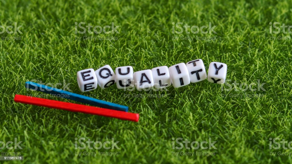 EQUALITY text cube on the lawn. stock photo