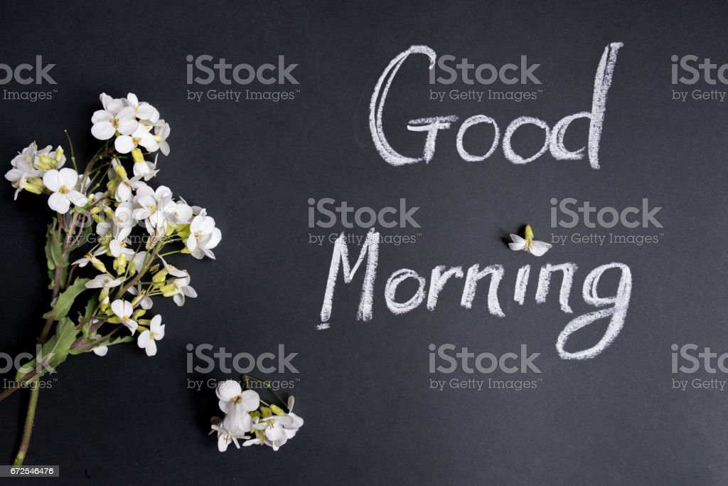 Text Good Morning White Flowers On A Black Background Stock Photo