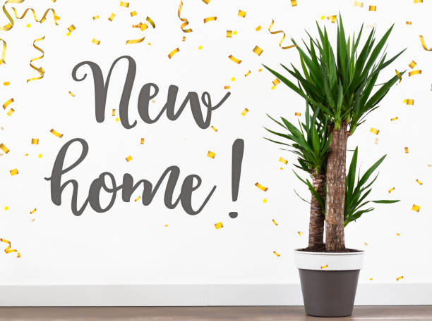 Text new home on wall in living room of a new house bought our first house stock photo