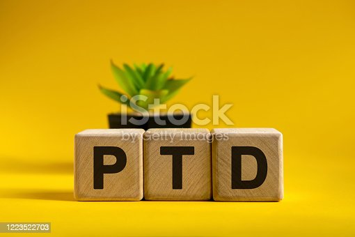 istock RTD - text on wooden cubes on a bright background and a black pot with a flower behind 1223522703