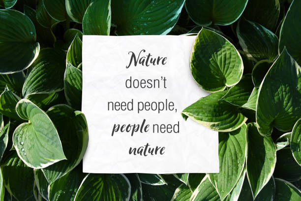 Text quote nature doesnt need people but people need nature save the world quotes stock photo