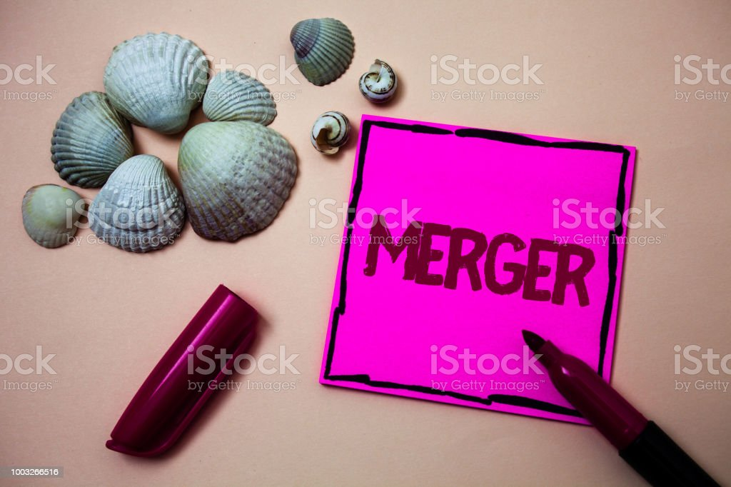 Text sign showing Merger. Conceptual photo Combination of two things or companies Fusion Coalition Unification Ink marker open cap small shells handwrittern notes artwork paper sheet. stock photo