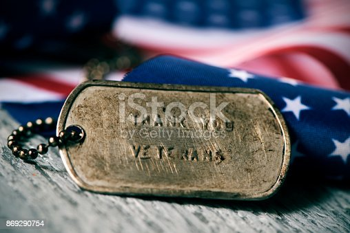 istock text thank you veterans in a dog tag 869290754