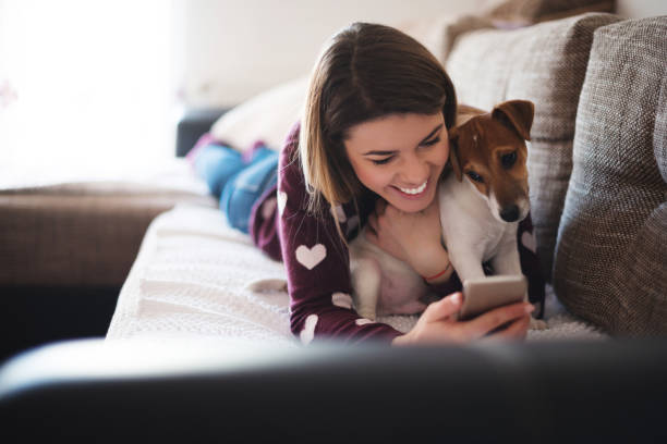 texting in bed - happy pets stock photos and pictures