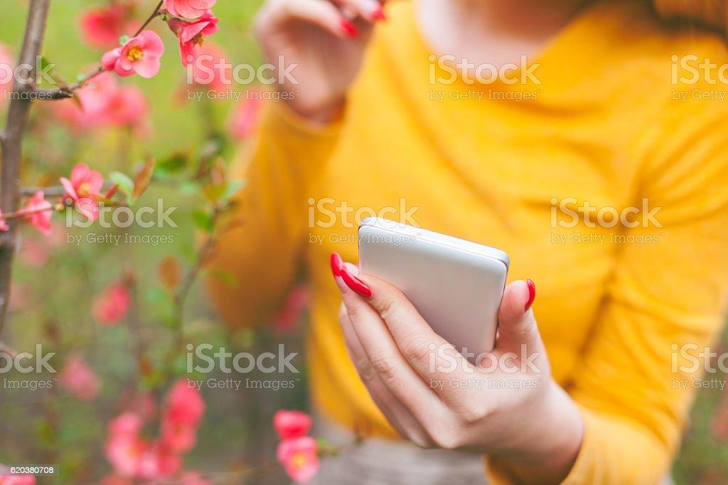 Wysyłanie SMS-ów  zbiór zdjęć royalty-free