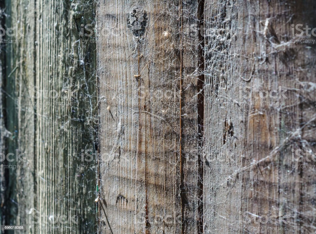 Texture and background of wooden fence with a spider web stock photo