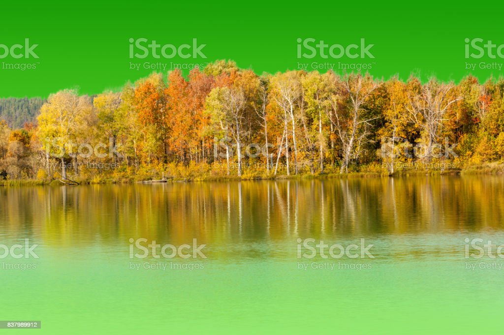 Texture, background. Autumn reflections in the water, on a green background hromakey, convenient for designers stock photo