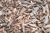 Texture background of fine wood chips