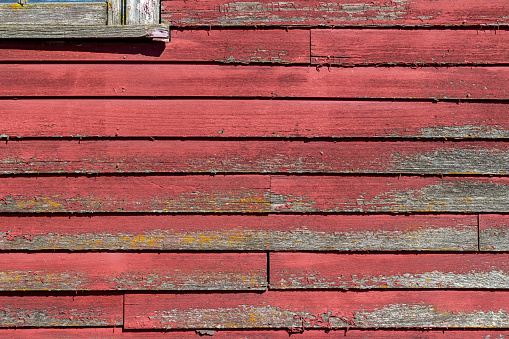 Close-up abstract texture background of rustic red painted lap siding on an old 19th Century wooden barn.