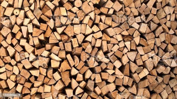 Photo of Texture, chopped firewood from different species of trees.