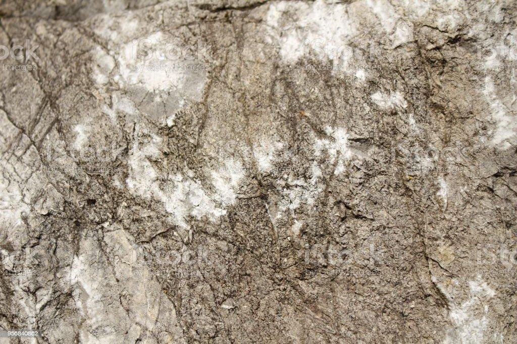 Texture De Pierre Marbre Gris Avec Des Taches Blanches Pour Fond Studio Photo Stock Photo Download Image Now Istock