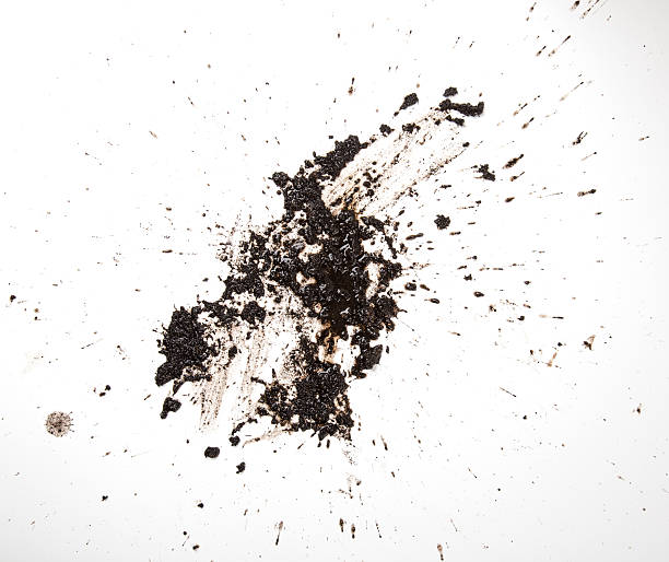 texture land in white background - mud stock photos and pictures