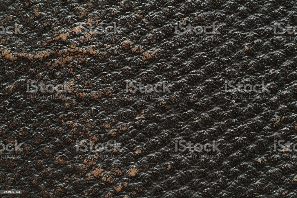 texture – leather royalty-free stock photo
