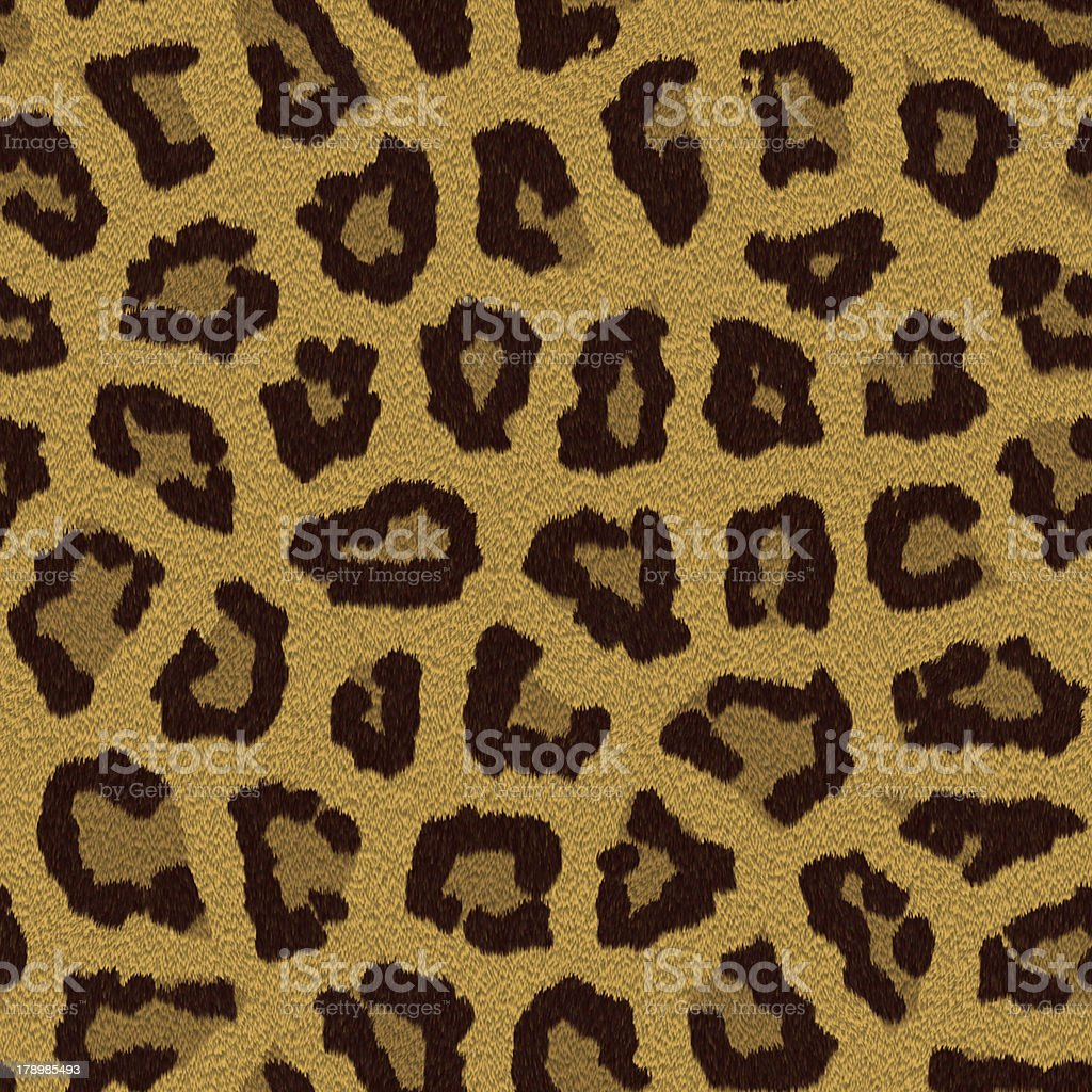 Texture of a leopard colouring royalty-free stock photo