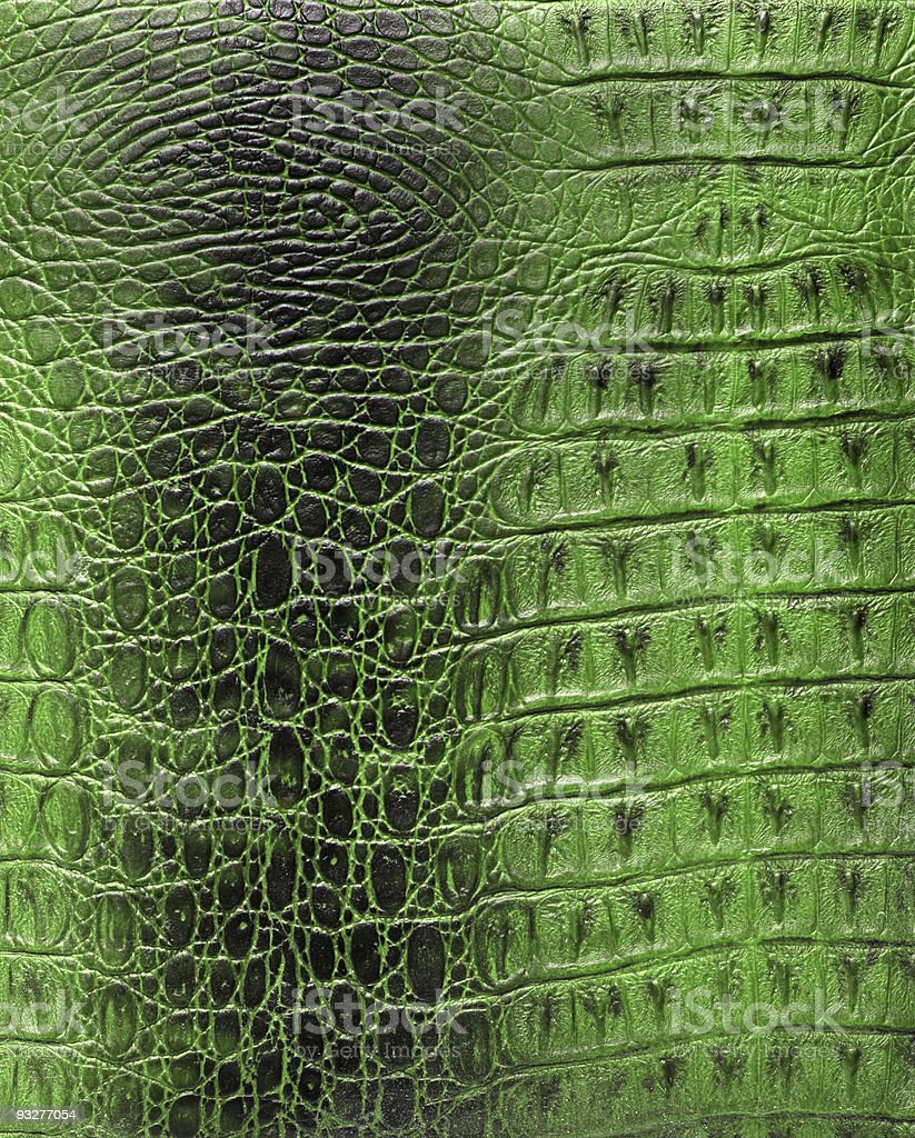 Texture of a reptile skin stock photo