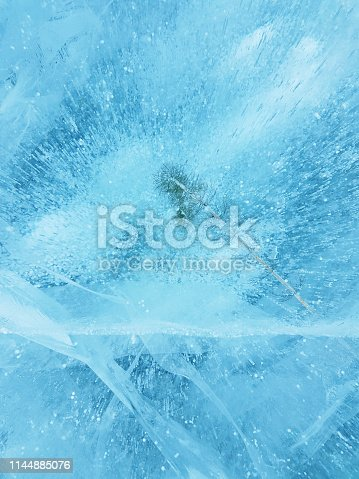 Ice texture and water plant of lake Baikal; the pattern occur from formation of Oxygen in water before frozen; shoot from mobile camera. Baikal lake ice background.