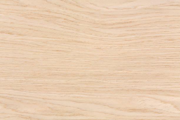 textur der schönen eiche, natürlichen hintergrund - eichenholz stock-fotos und bilder