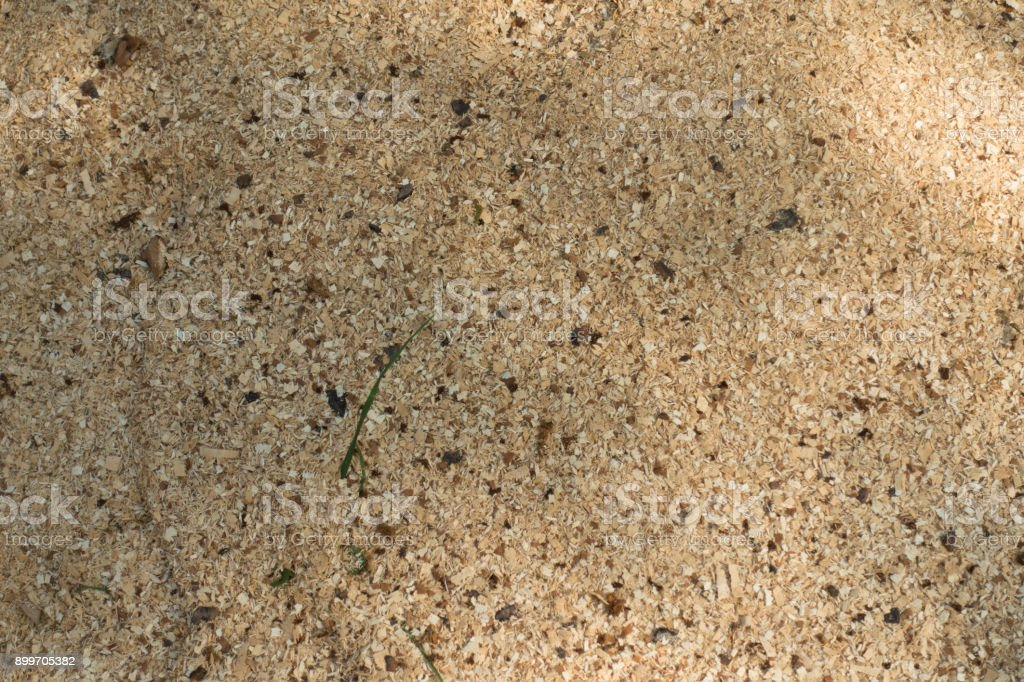 Texture of beige cottonwood sawdust from above stock photo