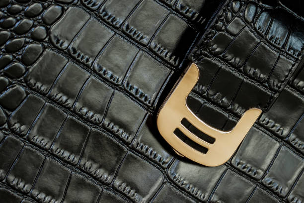 Textura de negro bolso de cuero con relieve en piel de reptil, hebilla dorada, cerradura - foto de stock