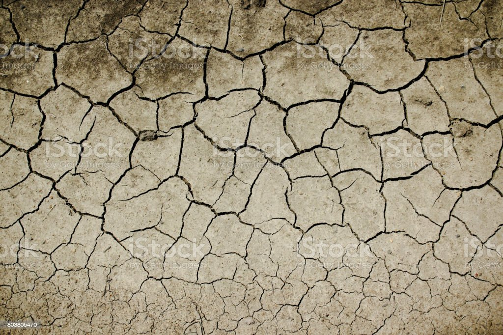 Texture of cracked earth, drought in nature