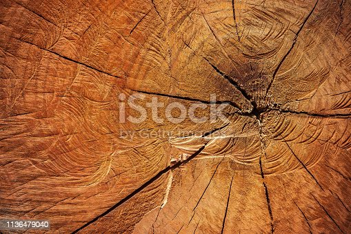 istock Texture of cutting timber by chainsaw. 1136479040