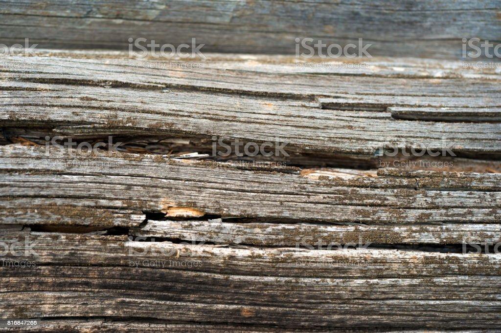 texture de fond naturel wood. foncé. - Photo