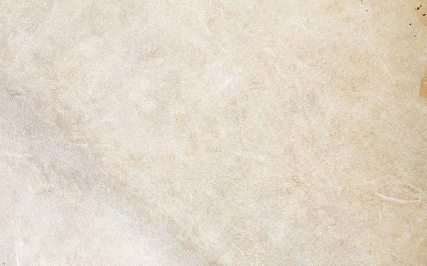 textur von drum leder aus rindsleder - wie alt werden kühe stock-fotos und bilder