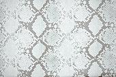 Snakeskin, Snake, Backgrounds,Textured, Pattern, White Color