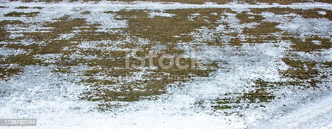 639394370istockphoto texture of Grass growing through snow spring 1138792744