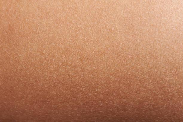 Texture of human skin stock photo