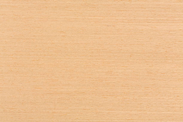 Texture of oak veneer, natural background Texture of oak veneer, natural background. Extremely high resolution photo. beech tree stock pictures, royalty-free photos & images