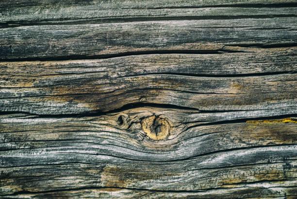 Textura da velha superfície de madeira - foto de acervo