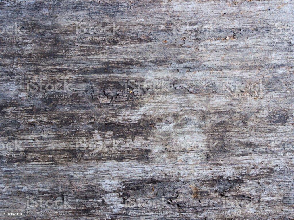 textur des alten holzoberfläche mit kratzern und verschmutzt alte