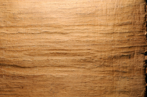 Texture Of Papyrus Paper Natural Background Stock Photo - Download Image Now