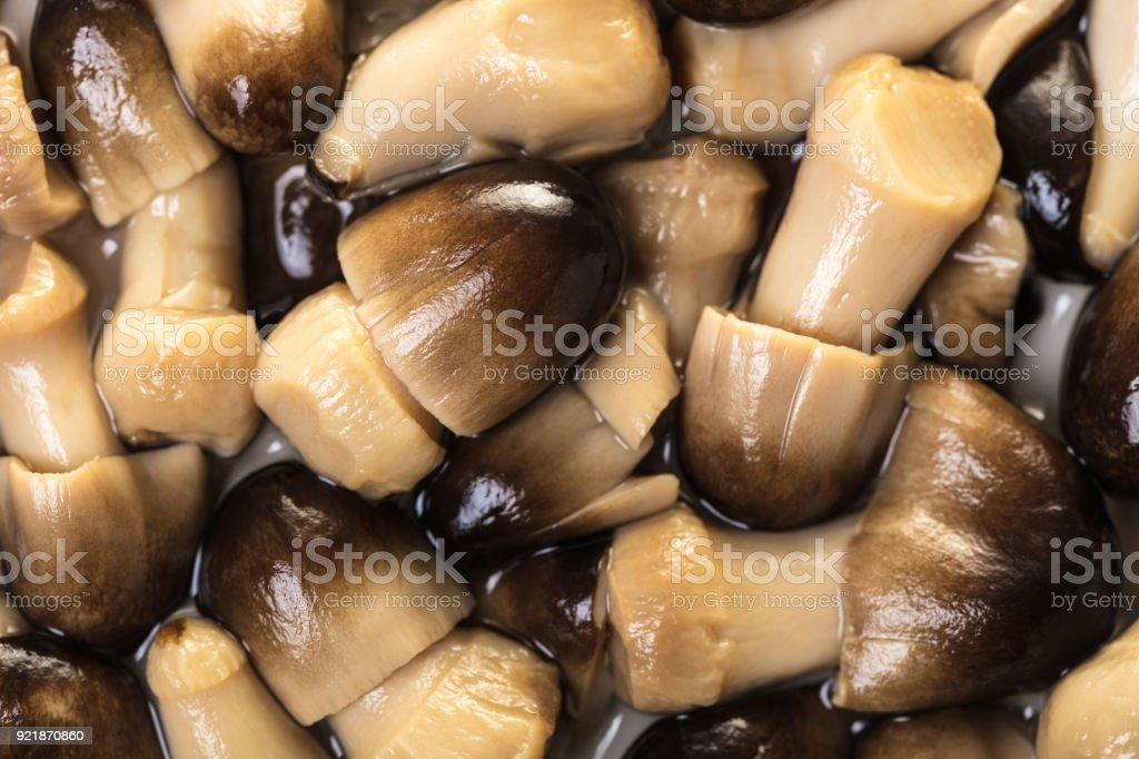 texture of pickled mushrooms closeup stock photo
