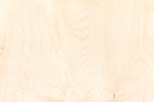 texture of plywood board. highly-detailed natural pattern background