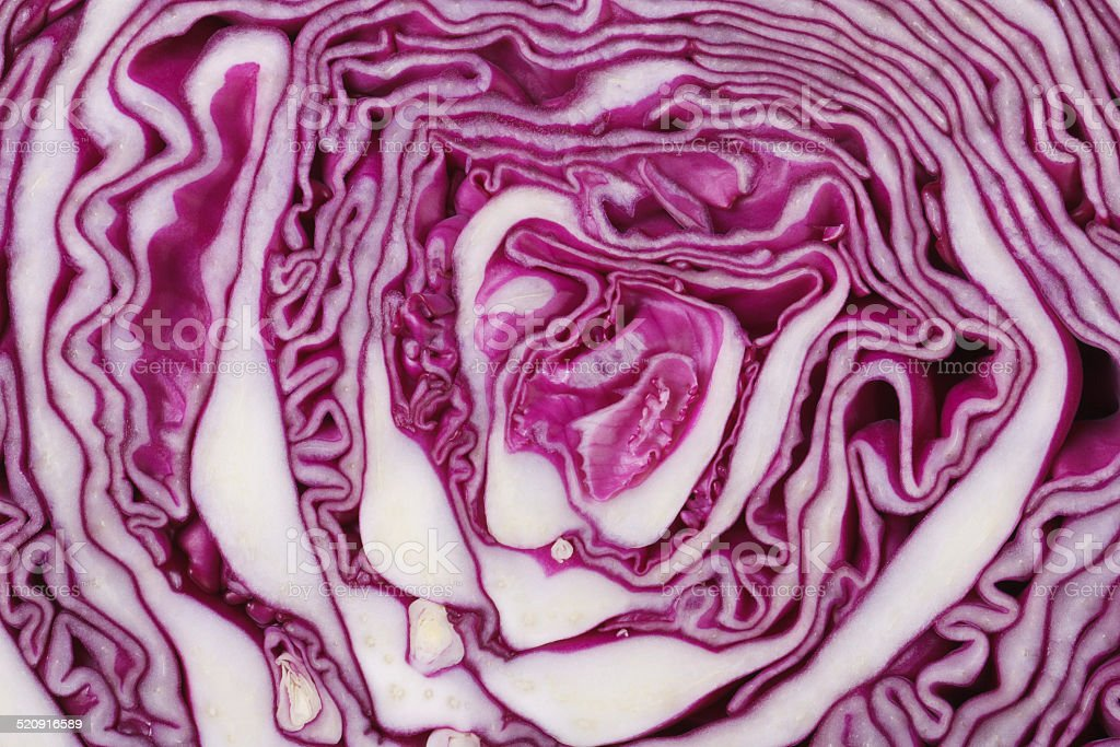 texture of red cabbage close up. macro stock photo