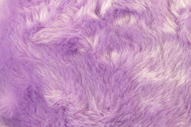 Texture of shaggy fur background detail of soft hairy skin material picture id1158794233?b=1&k=6&m=1158794233&s=612x612&w=0&h=h9pmpif1n uwfy6qsun8ddkuvpwrtvcgnw26plalyas=