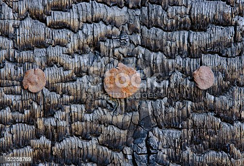 istock Texture of the burnt wooden wall 152258769