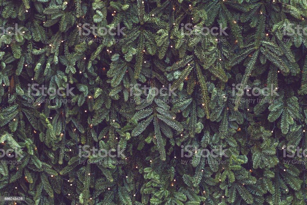 Textura de parede decorada com guirlandas e ramos de abeto pinho verde, fundo de decorações de Natal - foto de acervo