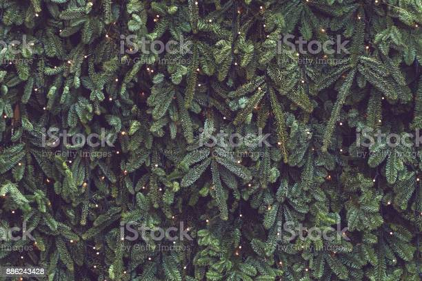 Photo of Texture of wall decorated with garlands and green pine fir branches, Christmas decorations background