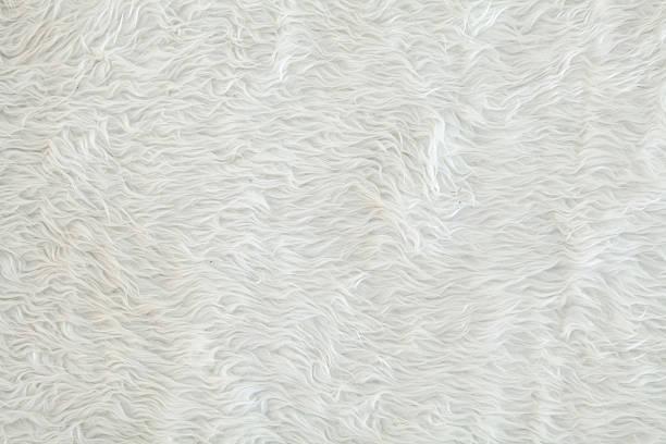 Texture Of White Fur Carpet Stock Photo