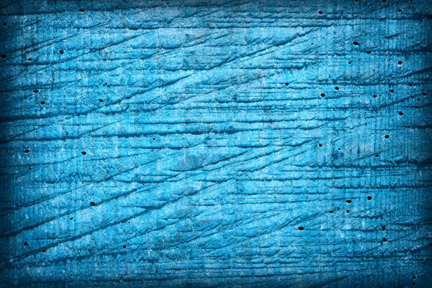 Texture old wood background, bitten by a bark beetle. Blue color. stock photo