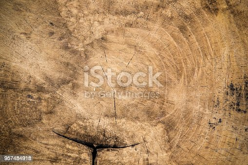 Texture wooden background. Top view with space for your text.