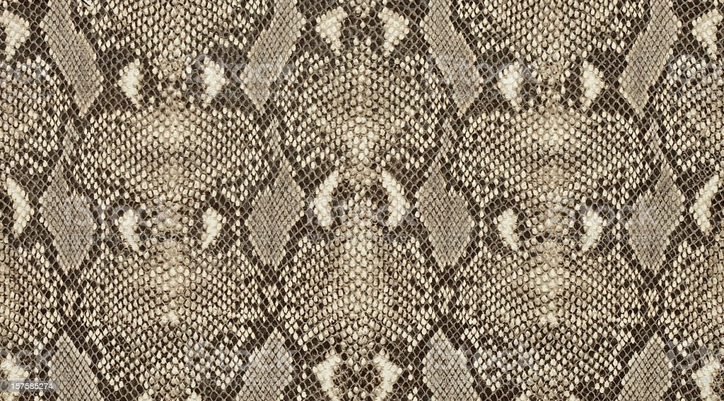 Textured background of genuine leather in python skin pattern stock photo
