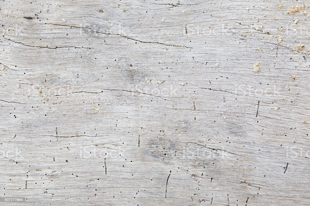 Textured Driftwood stock photo