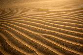 Textured lines in the sand. Bright orange in color. Abstract Background / Copy space