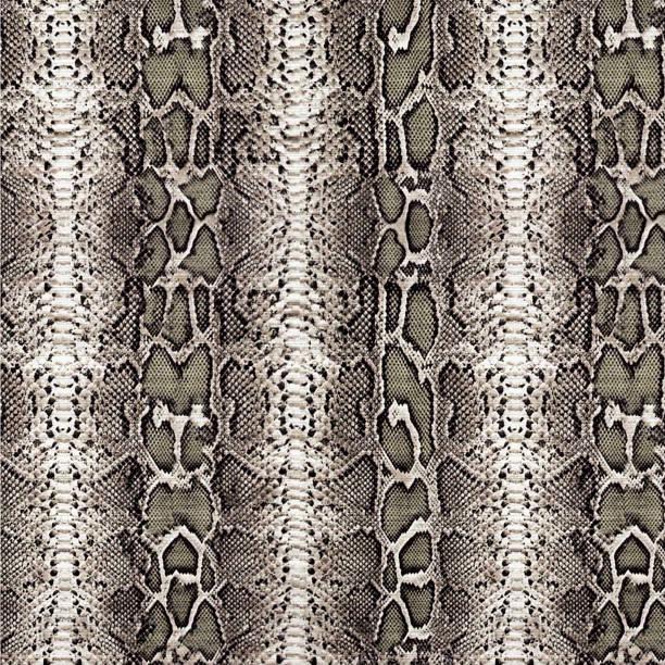 Patrón de textura piel de serpiente - foto de stock