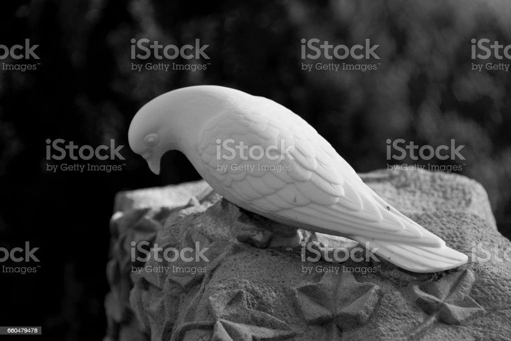 textured tombstone with white dove stock photo